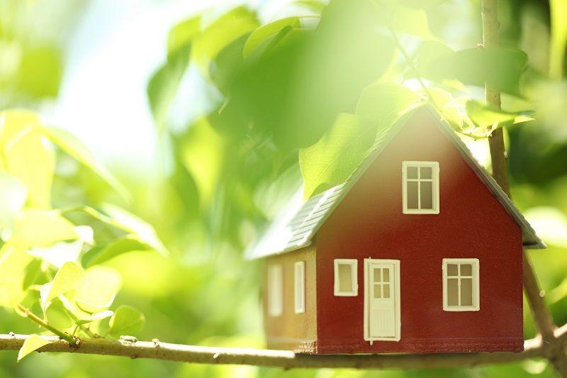 Ekologická domácnost