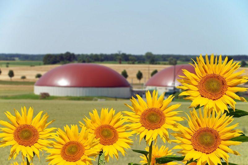 Výroba bioplynu